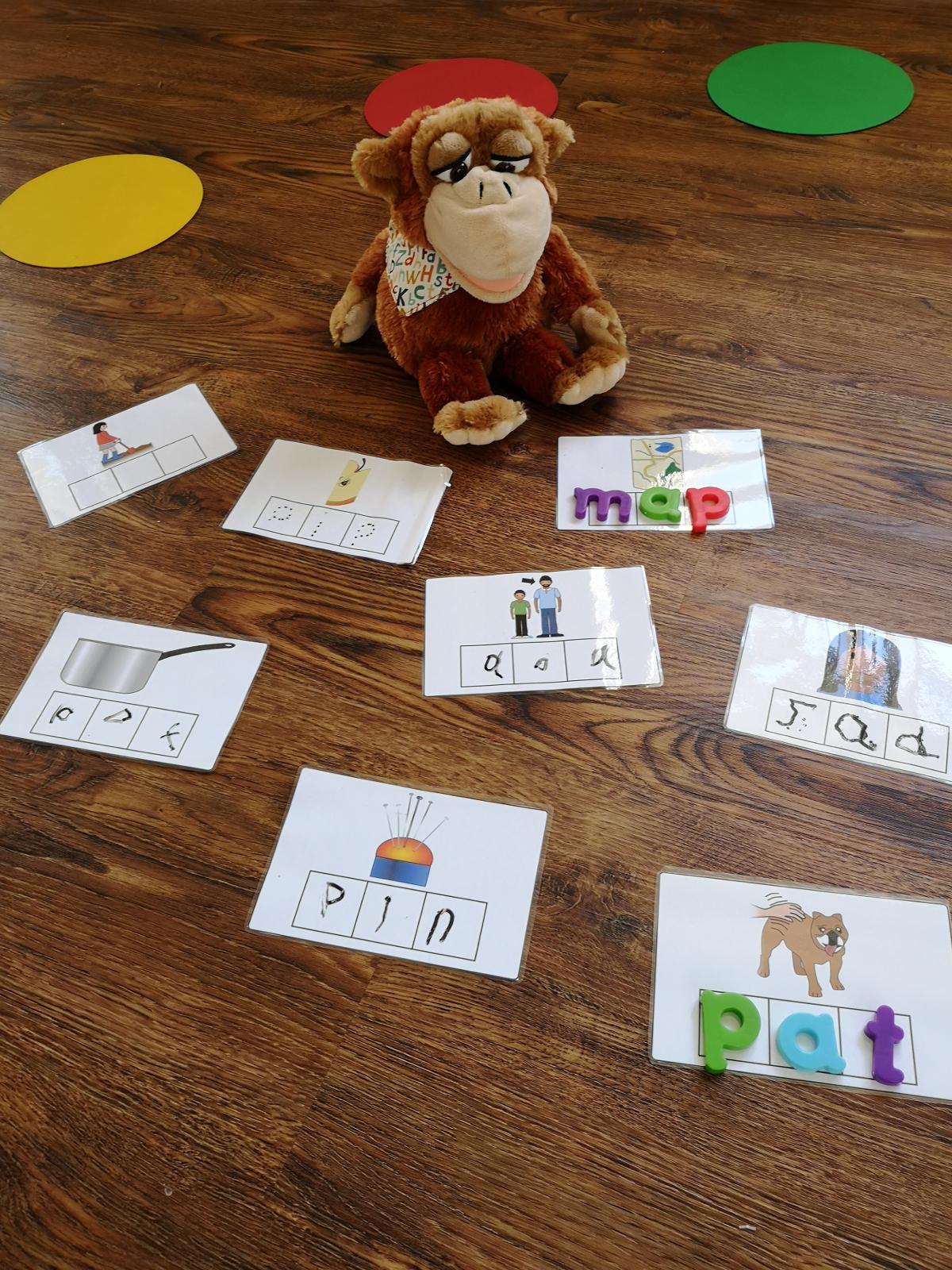 monkey word learning